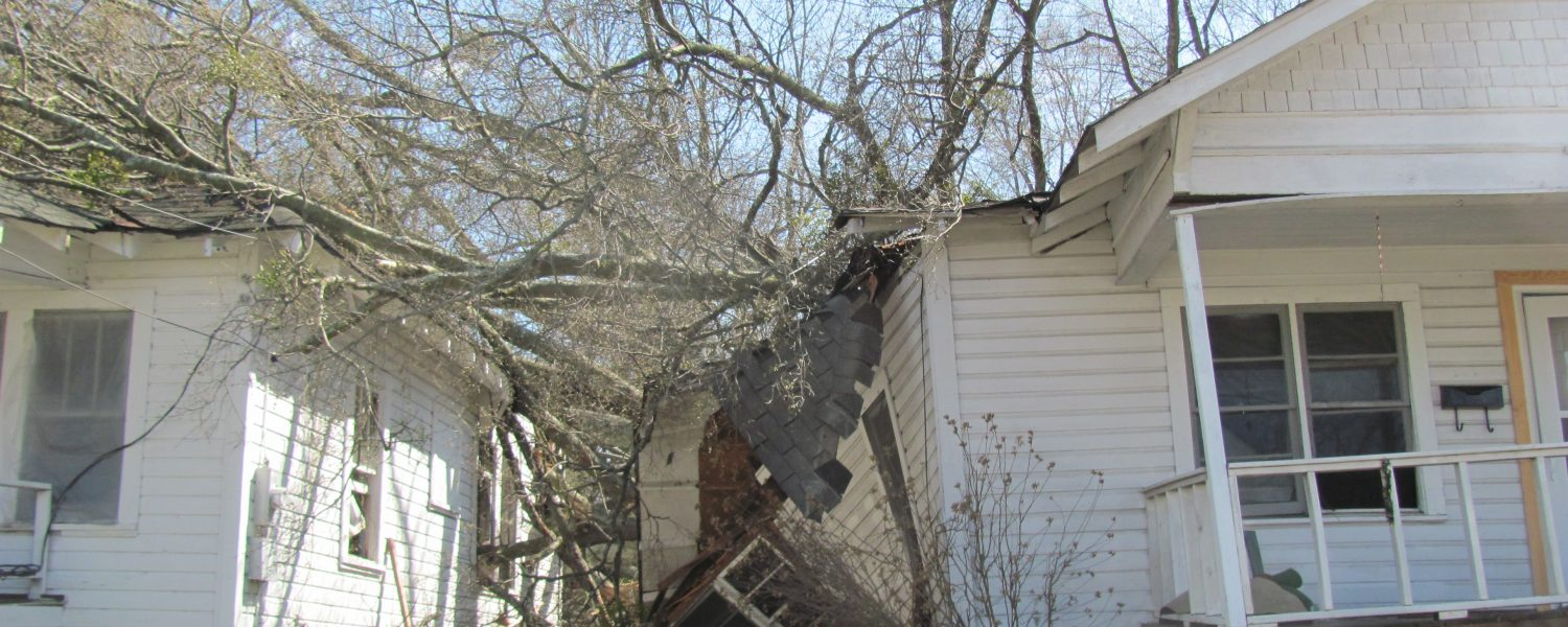 Tree fall causes minor injuries, major damage