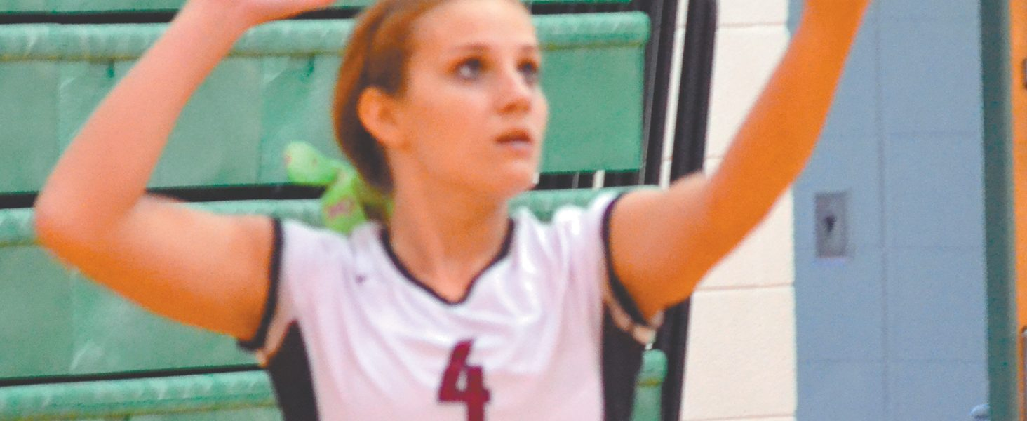 Local volleyball teams set for season