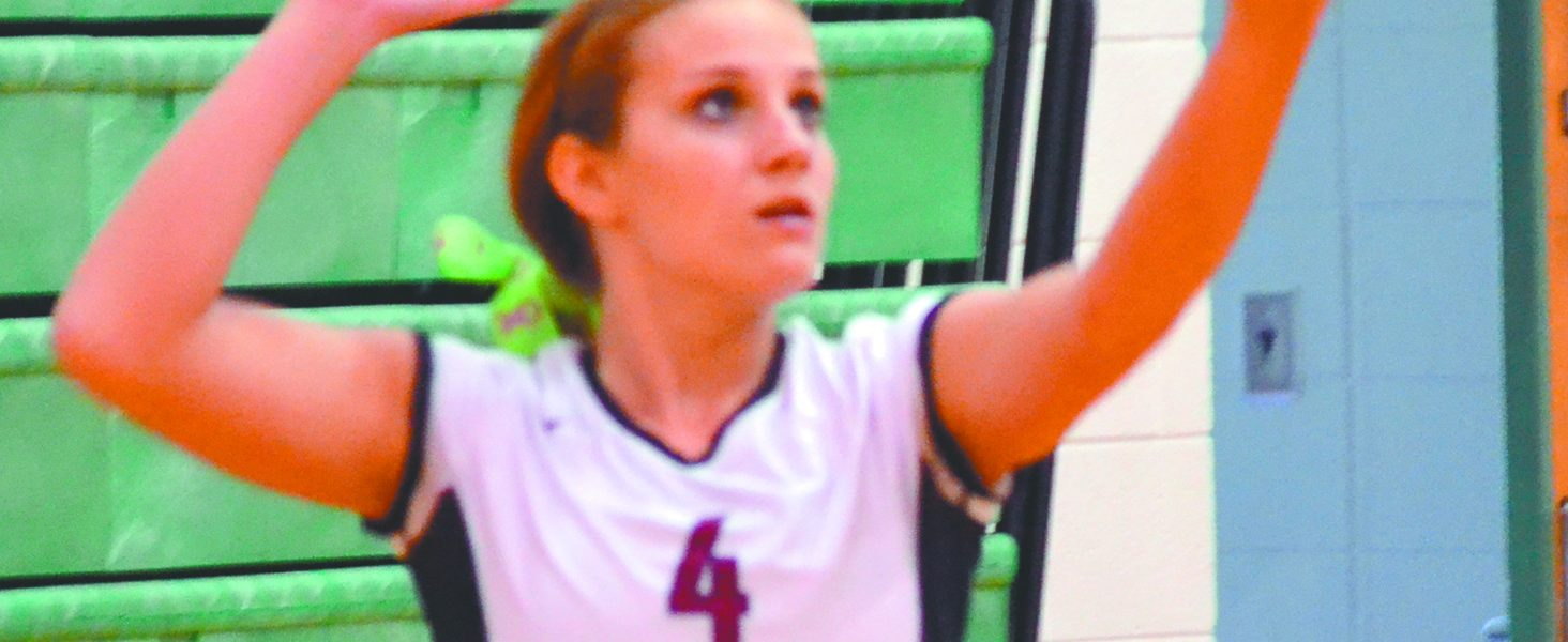 Lady Panthers win county volleyball tournament