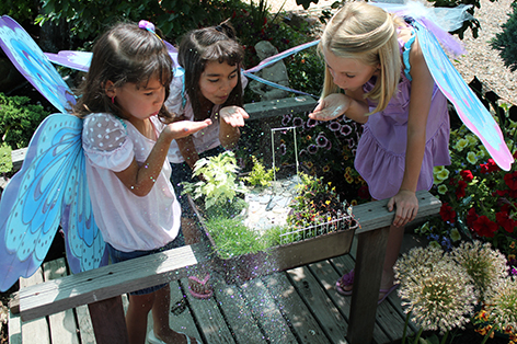 Fairy Gardens: Quirky fun on a small scale