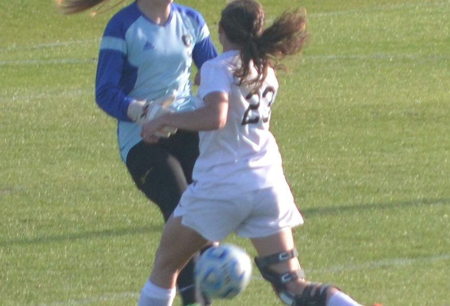 Westbrook falls in state soccer final