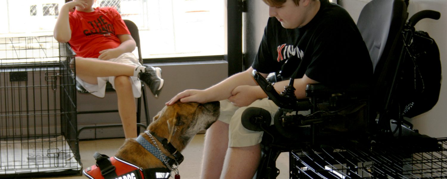 Family turns pet into service dog for son