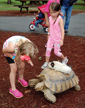 Noccalula Falls celebrates World Turtle Day