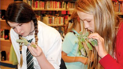 Gadsden Public Library hosts magical birthday party