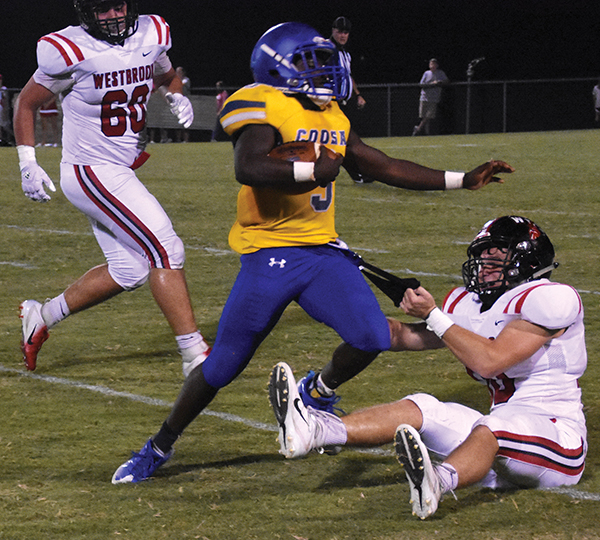 Area players recognized in AHSAA prep football spotlight